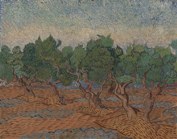 Van Gogh Olive Groves